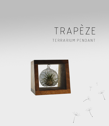 Trapèze-Terrarium-Adidea-Design_01